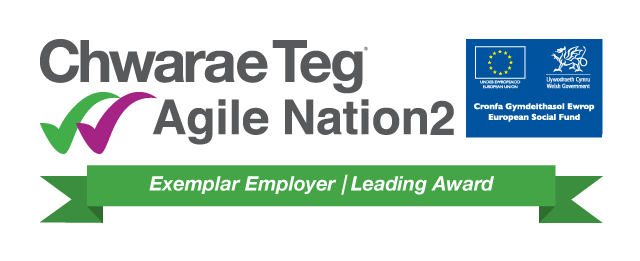 Chwarae Teg Employer Award